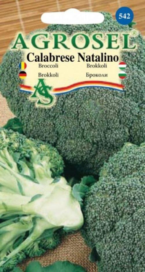 broccoli-calabrese